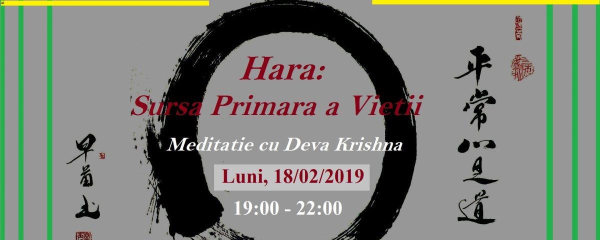 Meditazione e Satsang 18-02-2019